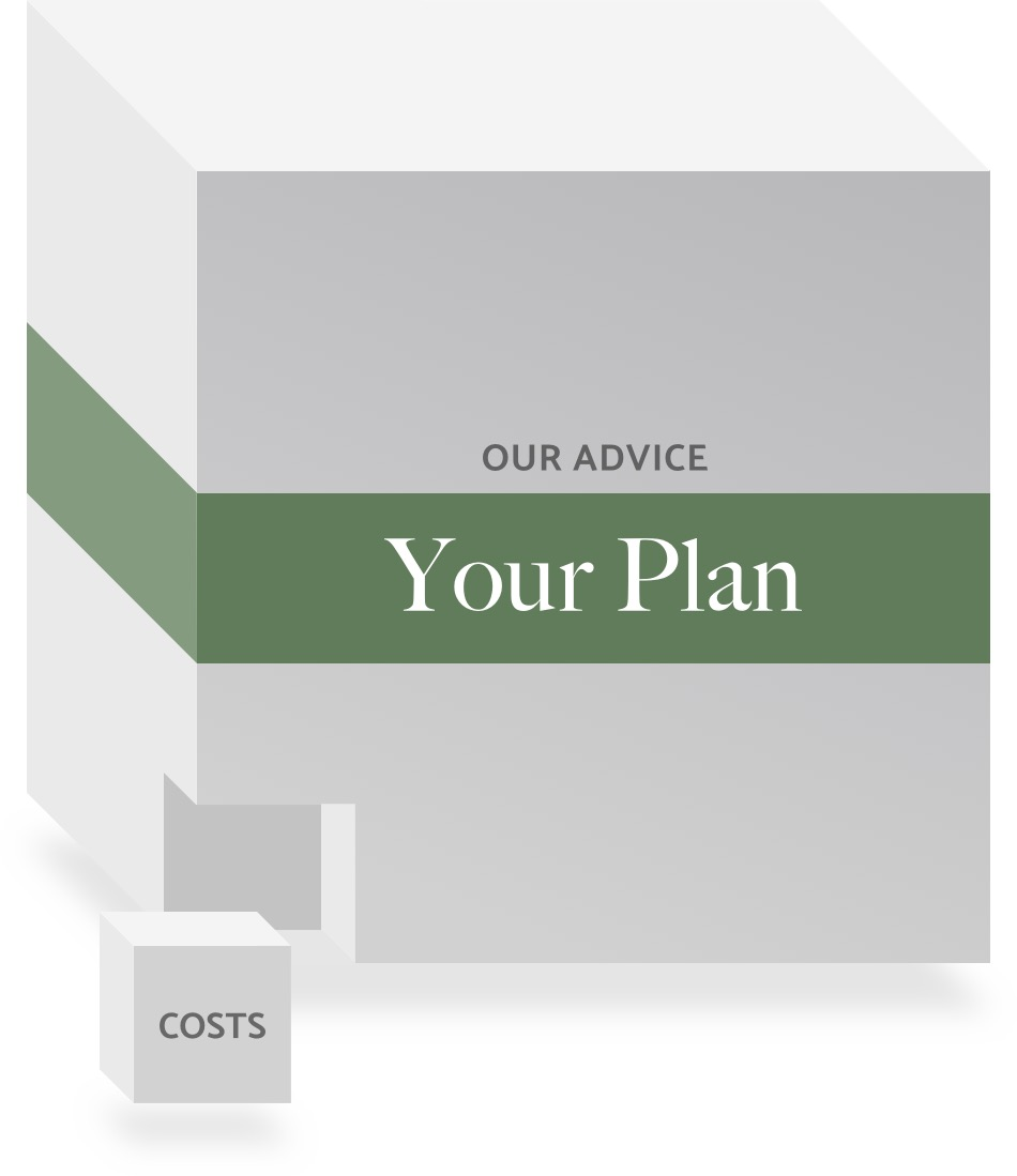 cost of advice